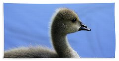 Hand Towel featuring the photograph Cygnet by Alyce Taylor
