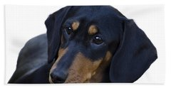 Dachshund Bath Towel by Linsey Williams