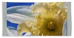 Bath Towel featuring the photograph Daffodil In The Sun by Bruce Bley