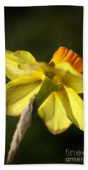 Hand Towel featuring the photograph Daffodils Grace by Joy Watson