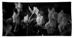 Daffodils In Black And White Hand Towel