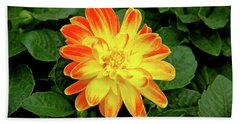 Dahlia Hand Towel by Ed  Riche