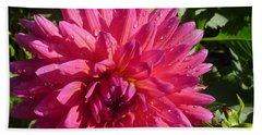 Dahlia Pink Bath Towel by Susan Garren