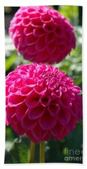 Hand Towel featuring the photograph Dahlia Xi by Christiane Hellner-OBrien