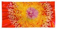 Daisy Mae Hand Towel by Dee Dee  Whittle