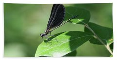 Hand Towel featuring the photograph Damselfly  by Karen Silvestri