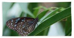Dark Blue Tiger Butterfly #2 Bath Towel by Judy Whitton