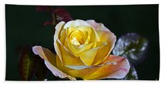 Bath Towel featuring the photograph Day Breaker Rose by Kate Brown