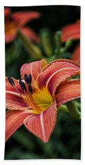 Day Lilies Hand Towel