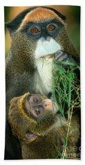 De Brazzas Monkey Bath Towel