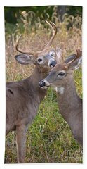 Deer 49 Bath Towel