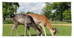 Two Deer Hand Towel