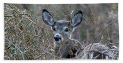 Hand Towel featuring the photograph Deer by Karen Silvestri