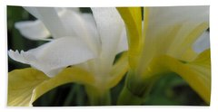 Bath Towel featuring the photograph Delicate Iris by Cheryl Hoyle