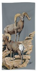 Desert Bighorn Rams Bath Towel