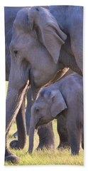 Dhikala Elephants Hand Towel