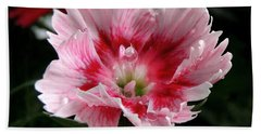 Dianthus Hand Towel by Kristine Merc