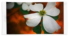 Dogwood Blossom Hand Towel by Brian Wallace