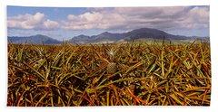 Dole Pineapple Farm, North Shore, Oahu Hand Towel