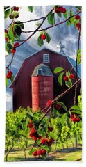 Bath Towel featuring the painting Door County Cherry Harvest Red Barn by Christopher Arndt