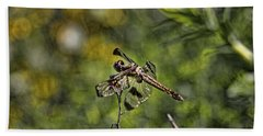 Bath Towel featuring the photograph Dragonfly by Daniel Sheldon