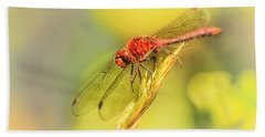 Dragonfly Days Bath Towel