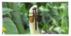 Bath Towel featuring the photograph Dragonfly by Karen Silvestri