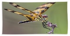 Hand Towel featuring the photograph The Halloween Pennant Dragonfly by Olga Hamilton
