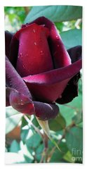 Bath Towel featuring the photograph Droplets On The Petals by Vesna Martinjak