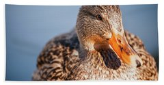Duck In Water Hand Towel