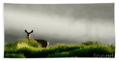 Dunes Deer P Bath Towel