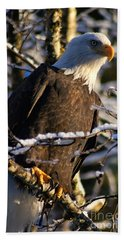 Hand Towel featuring the photograph Eagle Sunset by Stanza Widen