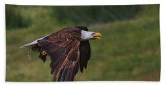 Eagle With Prey Hand Towel