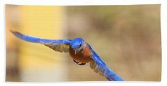 Eastern Bluebird Hand Towel by Everet Regal