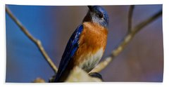 Eastern Bluebird Hand Towel
