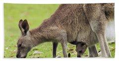 Eastern Grey Kangaroo And Joey In Pouch Bath Towel