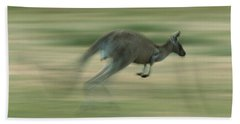 Eastern Grey Kangaroo Female Hopping Hand Towel by Ingo Arndt