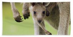 Eastern Grey Kangaroo Joey Peering Bath Towel