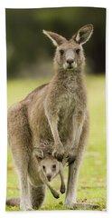 Eastern Grey Kangaroo With Joey Peering Bath Towel