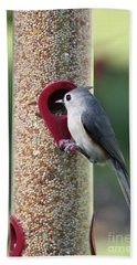 Eastern Tufted Titmouse  Hand Towel