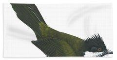 Eastern Whipbird Hand Towel