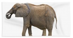 Hand Towel featuring the photograph Elephant by Charles Beeler