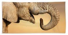 Designs Similar to Elephant Drinking
