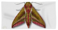 Elephant Hawk Moth Butterfly - Deilephila Elpenor Naturalistic Painting - Nettersheim Eifel Bath Towel