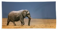 Elephant In Grassfield Hand Towel
