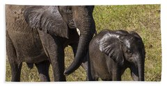Elephant Mom And Baby Bath Towel