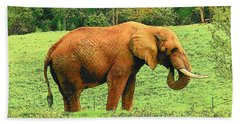 Bath Towel featuring the photograph Elephant by Rodney Lee Williams