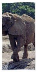 Elephant Two Hand Towel