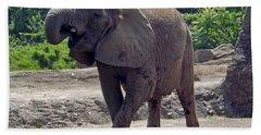 Elephant Two Bath Towel by Joyce  Wasser