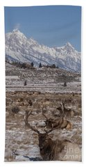 Elk And The Grand Tetons Bath Towel